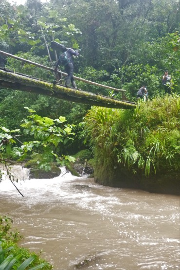 Simple bridge crossing a jungle stream